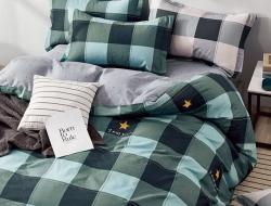 Двуспальное постельное белье из твил-сатина «20-25»