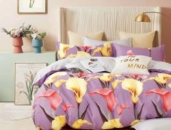Полуторное постельное белье из твил-сатина «27-22»